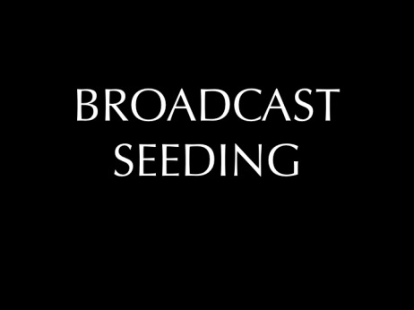 Broadcast Seeding Title Slide