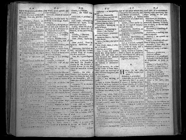 An old English dictionary opened up for view.